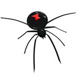Classic Redback Spider Designs on T-shirts, Gifts.
