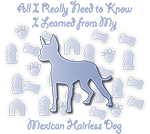 Learned From My Mexican Hairless Dog
