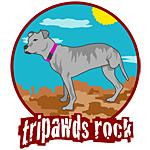 Rear Leg Tripawds Rock Three Legged Pit Bull T-Shirts