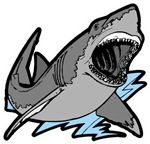 Shark Great White Ocean T-shirts & Gifts