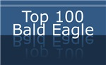 Top 100 Bald Eagle Tshirts Gifts