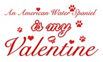 An American Water Spanielis my valentines