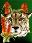 Wild Wild Animals