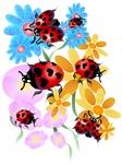 Lucky-Love Ladybugs