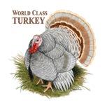 World Class Turkey