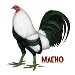 Macho Duckwing Gamecock