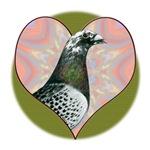 Racing Pigeon Heart