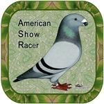 Show Racer Portrait