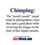 Chimping