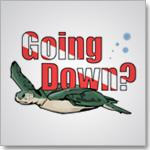 Going Down?  Turtle