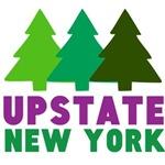 UPSTATE NEW YORK (PINE TREES)