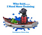 Portuguese Water Dog Who Said I Need More Training