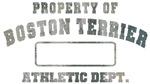 Property of Boston Terrier