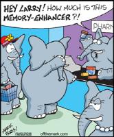 Elephant Memory Enhancer