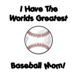 I have the worlds greatest baseball mom!