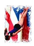 Trampoline Gymnast