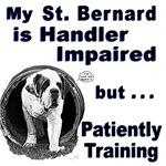 Saint Bernard Agility