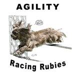 Cavalier/Ruby Agility