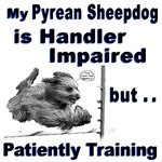 Pyrean Sheepdog