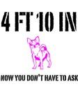4 FT 10 IN