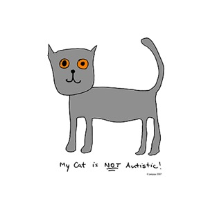 Not Autistic Cat