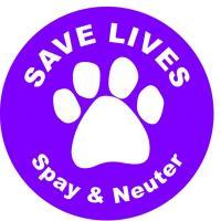 Save Lives Spay & Neuter
