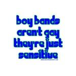 Boy Bands Aren't Gay