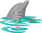 Dolphin On Surface