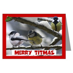Funny tits Christmas photo cards for tit lovers