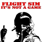 flight sim its not a game PG