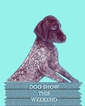 German Shorthaired Pointer Designs