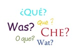 SAY WHAT? Fun Phrases in Foreign Languages
