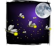 Heavenly Fireflies