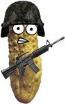 Combat Pickle