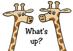 What's Up? Giraffe t-shirts & gifts