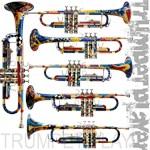 Trumpet Gifts Trumpet Art Shop