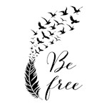Be free feather with flying birds