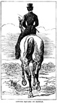 The Victorian Equestrian