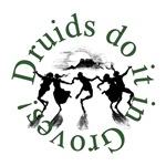 Druids Do It In Groves