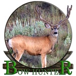 bow hunter, trophy buck