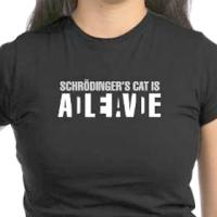 Schr�dinger's Cat