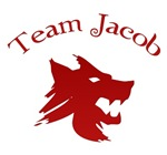 Twilight T-shirts. TEAM JACOB.