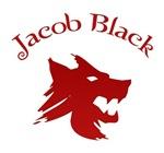 Twilight T-shirts. JACOB BLACK.