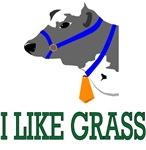 I Like Grass