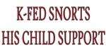 K-Fed Child Support