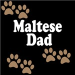 Maltese Dad