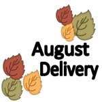 AUGUST DELIVERY-WITH PRETTY AUTUMN LEAVES