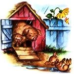 Piggy Piglets Baby Pigs