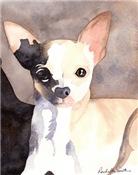 Chihuahua Stuff!