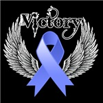 Victory Stomach Cancer Shirts